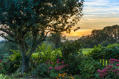 Coucher du soleil de jardin Photographie stock