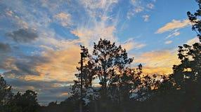 Coucher du soleil de Kew Image libre de droits
