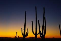 Coucher du soleil de l'Arizona images stock