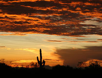 Coucher du soleil de l'Arizona photo libre de droits