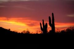 Coucher du soleil de l'Arizona Photo libre de droits