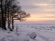 Coucher du soleil de l'hiver Image stock