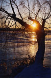 Coucher du soleil de l'hiver sur le fleuve de Dniepr Photos stock