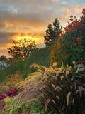 Coucher du soleil de la Californie images libres de droits