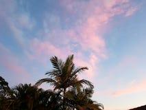Coucher du soleil de la Gold Coast Photographie stock