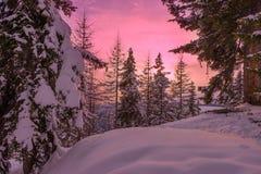 Coucher du soleil de la Laponie Photos libres de droits