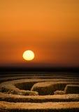Coucher du soleil de labyrinthe de haie Photographie stock