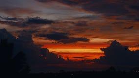 Coucher du soleil de laps de temps, lever de soleil dans la jungle, silhouettes de paume, cirrus lumineux banque de vidéos