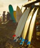 Coucher du soleil de location de planches de surf de surfers de plage photos stock