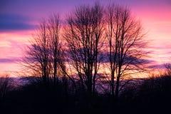 Coucher du soleil de ma fenêtre Images libres de droits