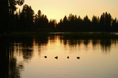 Coucher du soleil de Manzanita de lac, parc national de Lassen, la Californie, Etats-Unis photographie stock