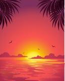 Coucher du soleil de mer (rose) Photographie stock
