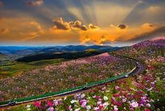 Coucher du soleil de montagne de cosmos, Hebei, Chine Images stock