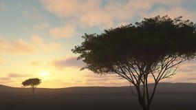 Coucher du soleil de nature Photos libres de droits