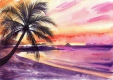 Coucher du soleil de Palm Beach Image stock