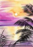 Coucher du soleil de Palm Beach Photographie stock libre de droits