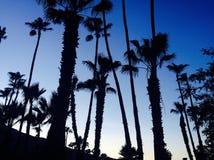 Coucher du soleil de Palm Spring images stock