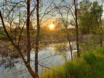 Coucher du soleil de parc photos libres de droits