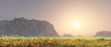Coucher du soleil de paysage de pré Photographie stock libre de droits