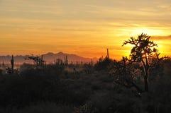 Coucher du soleil de Peralta Photos stock