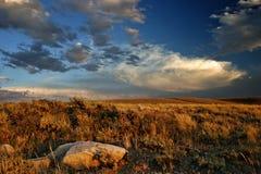 Coucher du soleil de prairie Photos stock