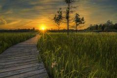 Coucher du soleil de prairie d'Irwin Photos libres de droits