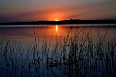 Coucher du soleil 2 de Reed Images libres de droits