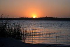 Coucher du soleil 2 de Reed Photographie stock