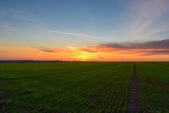 Coucher du soleil de ressort Photographie stock libre de droits