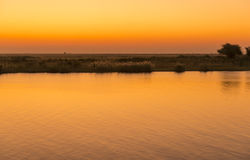 Coucher du soleil de rivière de Chobe photos libres de droits