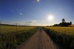 Coucher du soleil de route de campagne Photos libres de droits