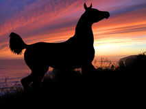 Coucher du soleil de silhouette de cheval Photos libres de droits