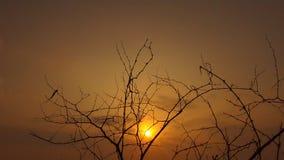 Coucher du soleil de soirée images stock