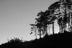 Coucher du soleil de soirée Photo stock