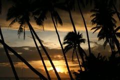 Coucher du soleil de Somoan Image libre de droits
