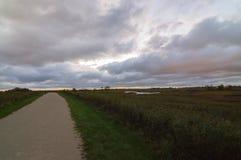 Coucher du soleil de Tallgrass de prairie de Naperville l'Illinois photographie stock