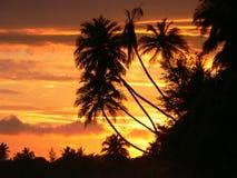 Coucher du soleil de Tangalla Image libre de droits