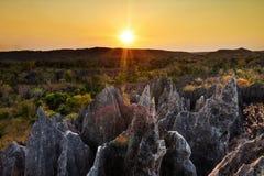 Coucher du soleil de tourisme de Tsingy image libre de droits