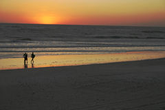 Coucher du soleil de vague déferlante Images stock