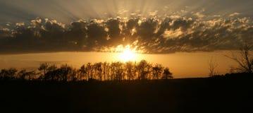 Coucher du soleil derrière des silhouettes d'arbre avec les nuages étonnants Photo libre de droits