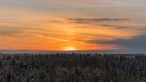 Coucher du soleil derrière les arbres en bois Image stock