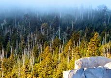 Coucher du soleil des couches du dôme de Clingman dans les montagnes fumeuses Images libres de droits