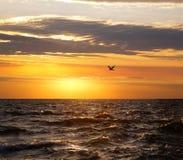 Coucher du soleil du lac Michigan Image libre de droits