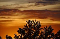 Coucher du soleil du Nouveau Mexique image libre de droits