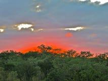 Coucher du soleil en Afrique Images libres de droits