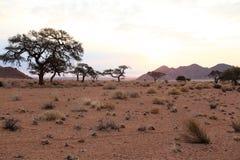 Coucher du soleil en Afrique Photographie stock