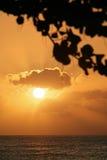 Coucher du soleil en Barbade Photo libre de droits