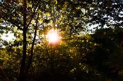 Coucher du soleil en Bourgogne images stock