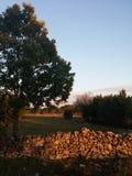 coucher du soleil en Dalmatie Photos libres de droits