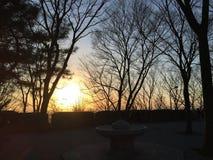 Coucher du soleil en hiver Image libre de droits